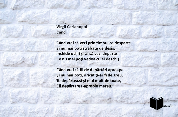 virgil carianopol-cand